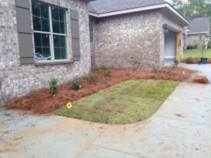 Center shrubs