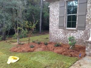 Left shrubs